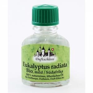 Eukalyptus radiata Bio (mild), Südafrika, 100% n..